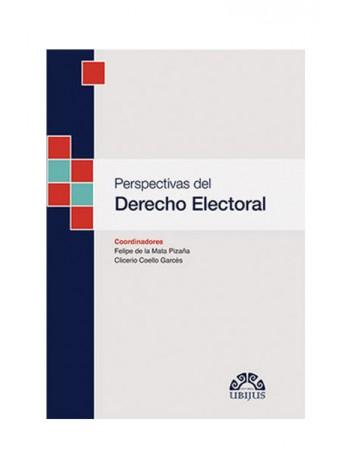 Perspectivas del Derecho Electoral 2020 (UBIJUS)